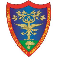 Arma dei carabinieri (CUTAA/CFS)