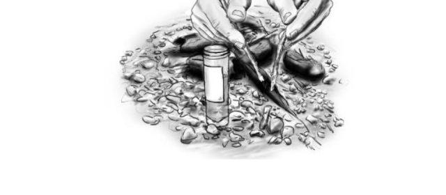 Linee guida per la raccolta di campioni di lince