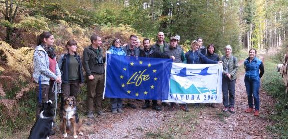We visited Palatinate Forest