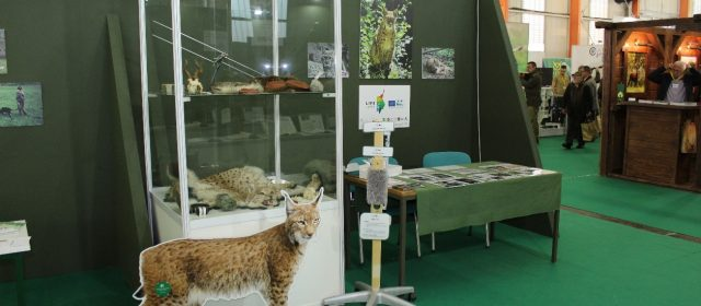 LIFE Lynx project presentation at International Hunting and Fishing Fair