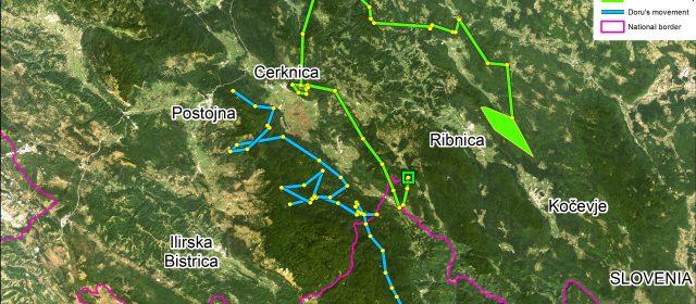 Goru i Doru u Sloveniji