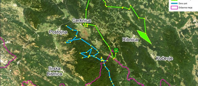 Goru in Doru iščeta svoj teritorij
