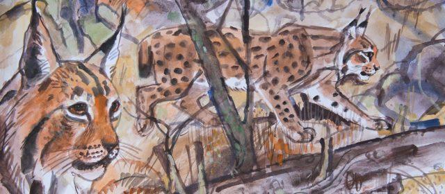 Lynx dating