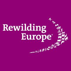 European rewilding network