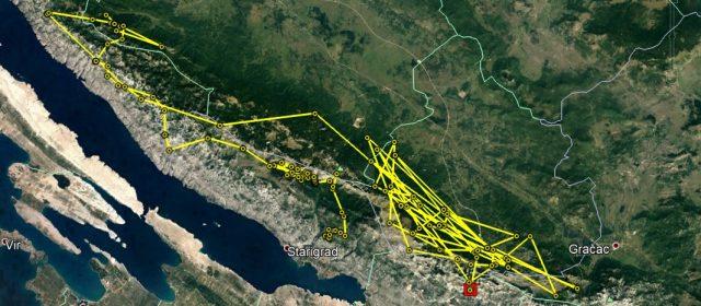 Alojzije sul Velebit meridionale
