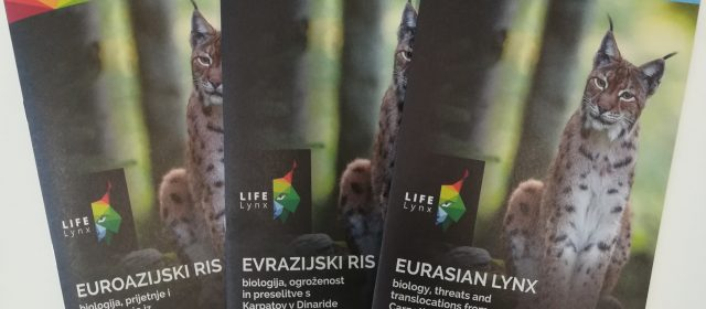 Brochure about lynx available online