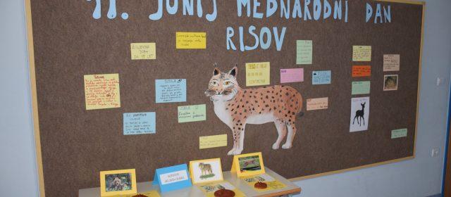 Delavnice na šolah in ustvarjanje učencev na mednarodni dan risov